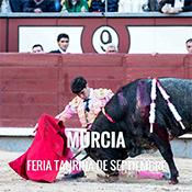 Toros en Murcia